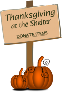 Thanksgiving-at-the-shelter